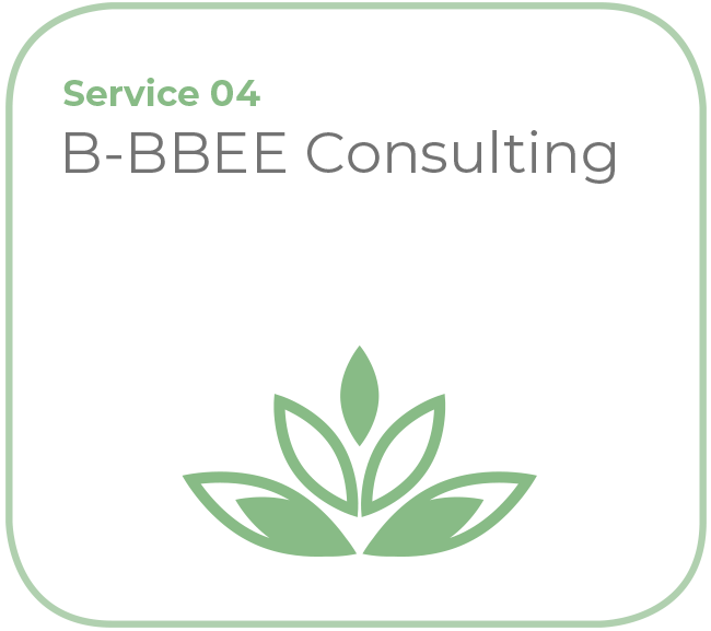 B-BBEE Consulting